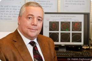 Habib Zaghouani propone curar la diabetes con células madre