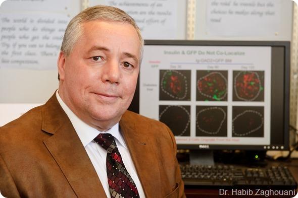 Células madre para curar la diabetes tipo 1 - Canal
