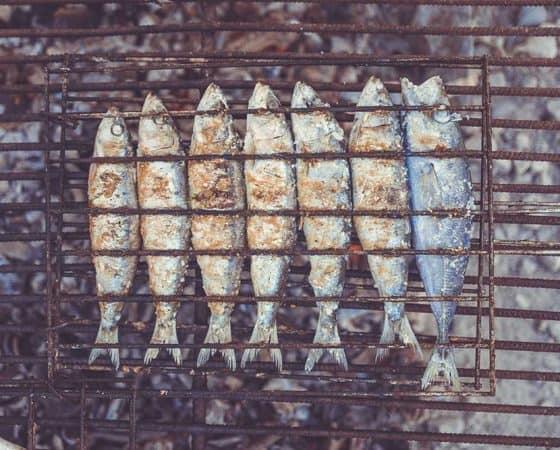 pescado graso