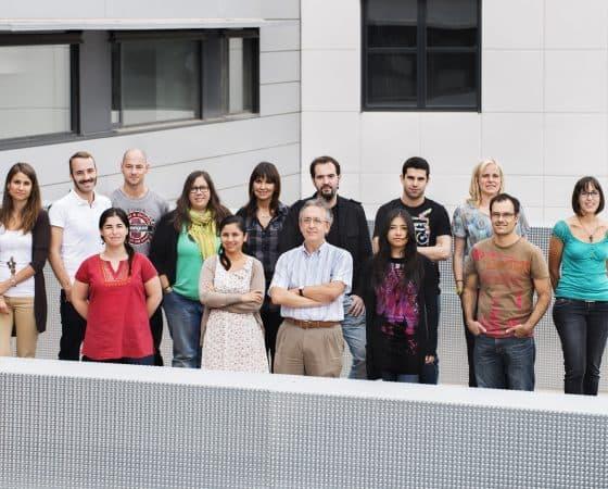 Grupo de investigación que lidera Antonio Zorzano en el IRB Barcelona perteneciente al CIBERDEM. Foto grupo Antonio Zorzano. Mitocondrial