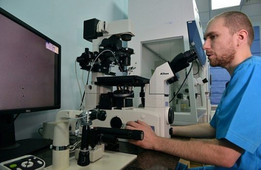 microbacterias fecales diabetes