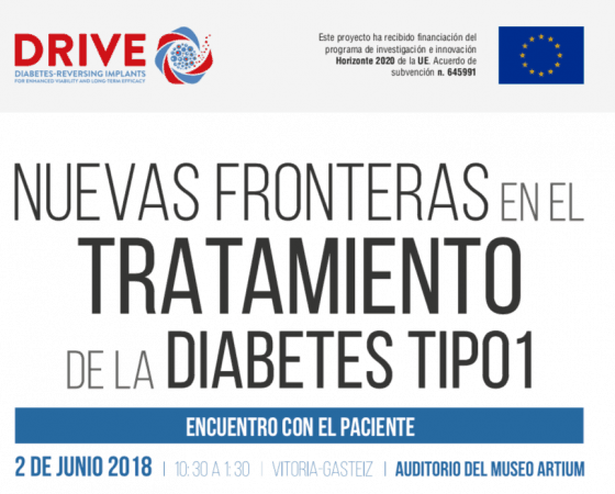 proyecto DRIVE