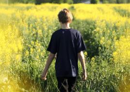 desarrollar autismo
